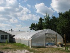 aqauponics greenhouse