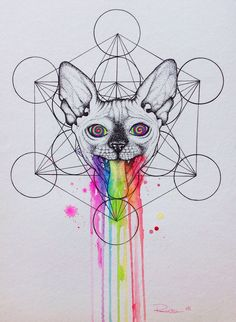 My name is Vanessa a.k.a Psyca, I'm an artist from Portugal and my specialty is Sphynx art. Ever since I started to portrait my baby Sphynx in art, breeders and ️Sphynx mamas have been asking me to do theirs.