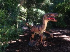 Prehistoric trail for National Science week - in partnership with the National Dinosaur Museum.