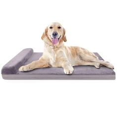 JoicyCo Dog Bed Large Orthopedic Foam Dog Bed Mat Washable Mattress with Pillow Machine Washable Cover Dog Beds For Small Dogs, Cool Dog Beds, Large Dogs, Bed Mats, Orthopedic Dog Bed, Pet Beds, Dog Supplies, Dog Love, Your Pet