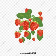 Strawberry Flower, Flowers, Design, Royal Icing Flowers, Flower, Florals, Floral, Blossoms