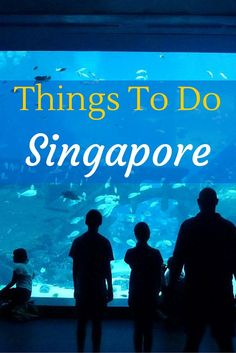 The perfect guide if you are looking for Things To Do in Singapore.  Read more on http://WagonersAbroad.com