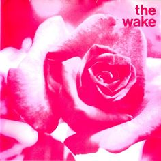 The Wake, Sarah Records Inspiral Carpets, Cocteau Twins, Indie Scene, Indie Pop, Music Pictures, Vinyl Cover, Indie Kids, Color Theory, Will Smith