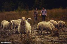 Loveshoot Natuurgebied Lisven Mierlo | Trouwdag in Beeld | www.trouwdaginbeeld.nl