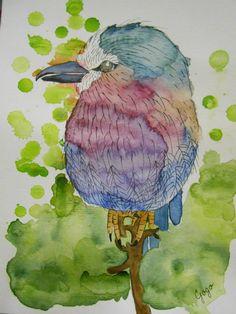 bird, watercolor, aquarell, aquarelle, lilac breasted roller, krakľa vidlochvostá