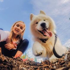 We're all smiles, here! National Pet Day, Dog Best Friend, Action Photography, Lovely Creatures, Samoyed, Cool Cats, Funny Dogs, Best Dogs, The Help