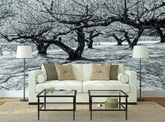 Black And White Tree Garden Hight Quality Mural Photo Wallpaper