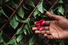 "Shamontiel wrote ""When to Apply Weed Killer"" #gardener #gardening #gardeningtips (Photo credit: Anete Lusina/Pexels) Weed Killer, Weed Control, Photo Credit, Gardening Tips, Things To Come, How To Apply, Projects, Log Projects, Blue Prints"