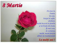 8 Martie, Funny Quotes, Flowers, Crafts, Gif, Google, Nails, Artist, Pictures
