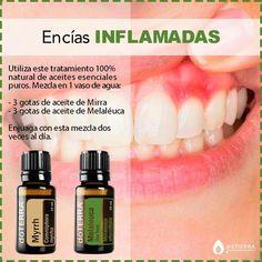 Doterra Cedarwood, Doterra Essential Oils, Essential Oils For Skin, Essential Oil Uses, Melaleuca, Doterra Blends, Esential Oils, Young Living Oils, Herb Garden