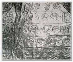 Mania UFO: Misterio de la Cueva de los Tayos - Biblioteca legendario metal que se encuentra en Ecuador