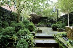 Urban Garden Design Julianne Moore's New York City garden was designed by Sawyer Small Gardens, Outdoor Gardens, Modern Gardens, Lush Garden, Home And Garden, Shade Garden, Green Garden, Green Terrace, Boxwood Garden