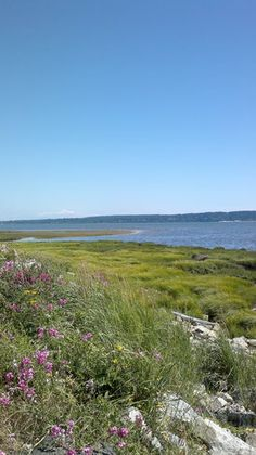 Mud Bay Park, Delta BC Canada. Crescent Beach is on the other side