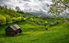 Preview wallpaper romania, transylvania, mountains, grass, summer