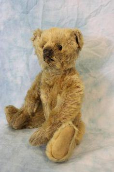 "10"" RARE Steiff Teddy Bear with ff underscored Button, Black Shoe eyes full fur!"