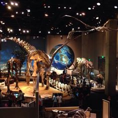 Perot Museum of Nature and Science - Museums - Dallas, TX - Reviews - Yelp