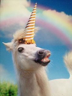 Seriously funny characters that translate across all borders. Funny Birthday Cards, Birthday Greeting Cards, Birthday Greetings, Birthday Wishes, Happy Birthday, Birthday Memes, Unicorn Birthday Meme, Monkey Birthday, Horse Birthday