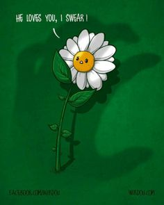 Humorous Illustrations by Wirdou