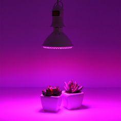 Exceptional Indoor Plants Lighting Hydroponics System To Grow Aquarium Plant Led Light  Outdoor Garden Greenhouse Flower Desktop Design