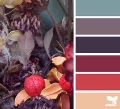 autumn trail palette