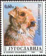 Airedale Terrier stamp from Yugoslavia. How come I can't get fuzzy bear stamps in America?? :(