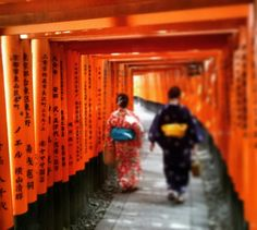 Kyoto, fleeting dream. เกียวโต  京