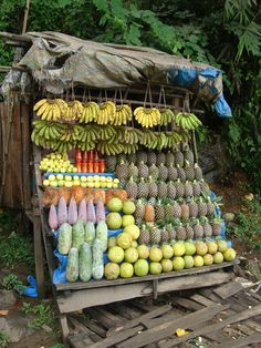 Roadside fruit stand in Meghalaya, India