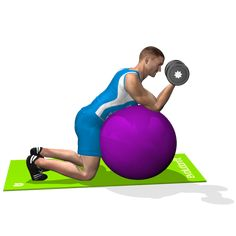 SEATED STABILITY BALL CONCENTRATION DUMBLLE CURL