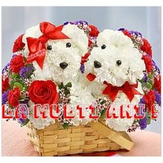 When an ordinary bouquet won't do, liven things up with this precious dog-shaped floral arrangement. Expertly crafted from fresh white carnations, these boy and girl pups will steal the heart of t . Beautiful Flower Arrangements, Floral Arrangements, Beautiful Flowers, Romantic Flowers, Unique Flowers, Romantic Gifts, 800 Flowers, Fresh Flowers, Flowers Today