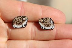 Frog Discover Desert Rain Frog Earrings : Gift for frog lovers Cute animal frog earrings studs for sensitive ears Surgical Stainless Steel Posts Piercings, Cute Jewelry, Jewelry Accessories, Weird Jewelry, Sup Girl, Estilo Hippy, Cute Frogs, Accesorios Casual, Pin And Patches