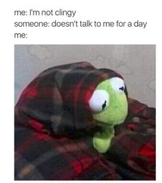 Have you laughed today? Enjoy the meme 'Kermit' uploaded by Memedroid: the best site to see, rate and share funny memes! Memes Humor, True Memes, Gym Humor, Humor Humour, Gym Memes, Funny Relatable Memes, Funny Jokes, Hilarious Quotes, Stupid Memes