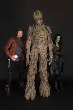 Meet Groot at Disney California Adventure Starting May 27