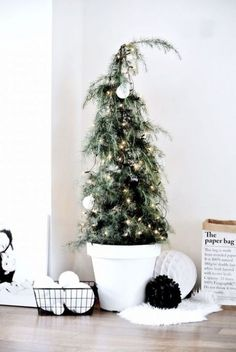 tiny potted tree with lights