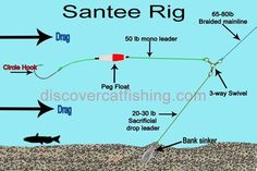 The two most popular rigs to catch catfish are the rig and the slip rig also known as the carolina rig. Although both of these rigs can be fished in some of the same situations in certain conditions, each also has its own unique presantaion. Catfish Rigs, Blue Catfish, Catfish Bait, Catfish Fishing, Bass Fishing Tips, Fishing Rigs, Fishing Knots, Fishing Guide, Sea Fishing