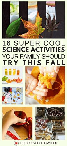 Fall is a fabulous time of year to try some STEM activities with your kids. I've collected 16 fall science experiments that will really wow your kids. Get ready to have some serious fun! Stem Science, Easy Science, Preschool Science, Science Experiments Kids, Science For Kids, Science Room, Summer Science, Elementary Science, Steam Activities