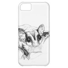 Sugar Glider Drawing, Sketch iPhone 5C Cover