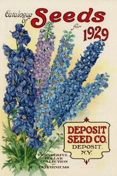 1929 seed packet graphic ~ makes great garden-themed gift tags. Use twine to tie on gift. Check out Free Vintage Flowers and Seed Packets Images with many suggestions for use Vintage Diy, Images Vintage, Vintage Labels, Vintage Ephemera, Vintage Cards, Vintage Postcards, Posters Vintage, Vintage Art Prints, Vintage Gardening