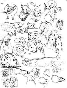 Rat Sketch Practice 7 by nEVEr-mor on DeviantArt