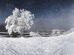 Western Snow Storm wallpaper