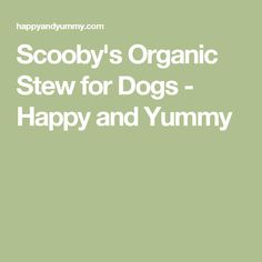 Scooby's Organic Stew for Dogs - Happy and Yummy