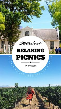 If you're looking for a more relaxed outdoor day, then a Stellenbosch picnic is a great option. Many Stellenbosch wine farms offers gorgeous picnic spots. Open Air Restaurant, Stuff To Do, Things To Do, Picnic Spot, The Great Outdoors, Farms, Night Life, The Good Place, Beautiful Places
