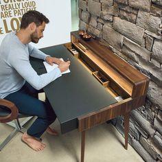 Schreibtisch sol mit zwei ineinander laufenden Schalen aus Holz und Leder