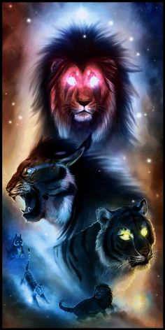 From the Realm of Light by Starcanis on DeviantArt Lion Live Wallpaper, Animal Wallpaper, Wolf Wallpaper, Lion King Art, Lion Art, Big Cats Art, Cat Art, Tiger Artwork, Tiger Pictures
