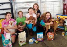 Menina de 9 anos desiste de presentes para poder ajudar abrigo de animais em seu aniversário | Razões para Acreditar