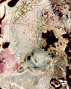 "Spit Art :) A ""Bacteriogram"" by Erno Erik Raitanen - microbiological cultures of saliva using photographic film as a growth medium."