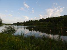 Micesti Lake, Cluj Napoca, Romania
