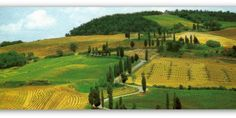 """Meeting Benches 