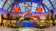 Bellagio Botanical Gardens - Las Vegas Chinese New Year 2014