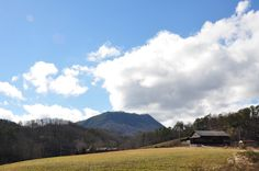 A drive through the Smokies and who knows what beautiful sights you might find!
