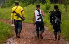 Varios civiles murieron este jueves durante una protesta de cocaleros en la población de Puerto Rico, una vereda del municipio colombiano de Tumaco. Las autoridades atribuyeron el ataque, que dejó decenas de heridos, a la disidencia de las FARC en el departamento de Nariño, uno de los más azotados por el cultivo de hoja de coca, los negocios de grupos residuales de la guerrilla y las mafias. Algunas asociaciones de campesinos culpan, en cambio, a las fuerzas de seguridad. Distintas fuentes…